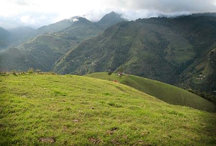 I bakgrunden och gömd bland molnen ses den bergskedja som ingår i Serraniaguas arbete med att bilda biologiska korridorer till nationalparken Tatamá.