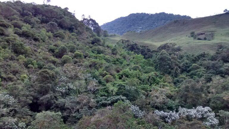 Ett av områdena som köpts in och nu är skyddat